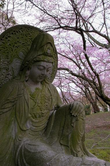 三井寺2.jpg